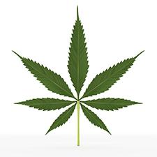 072016marijuana