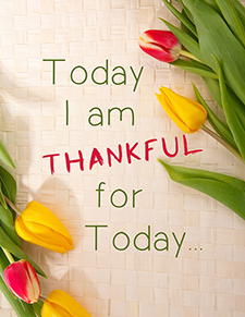 20 Quotes On The Importance Of Thankfulness And Gratitude Insurenow